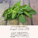 stevia50g