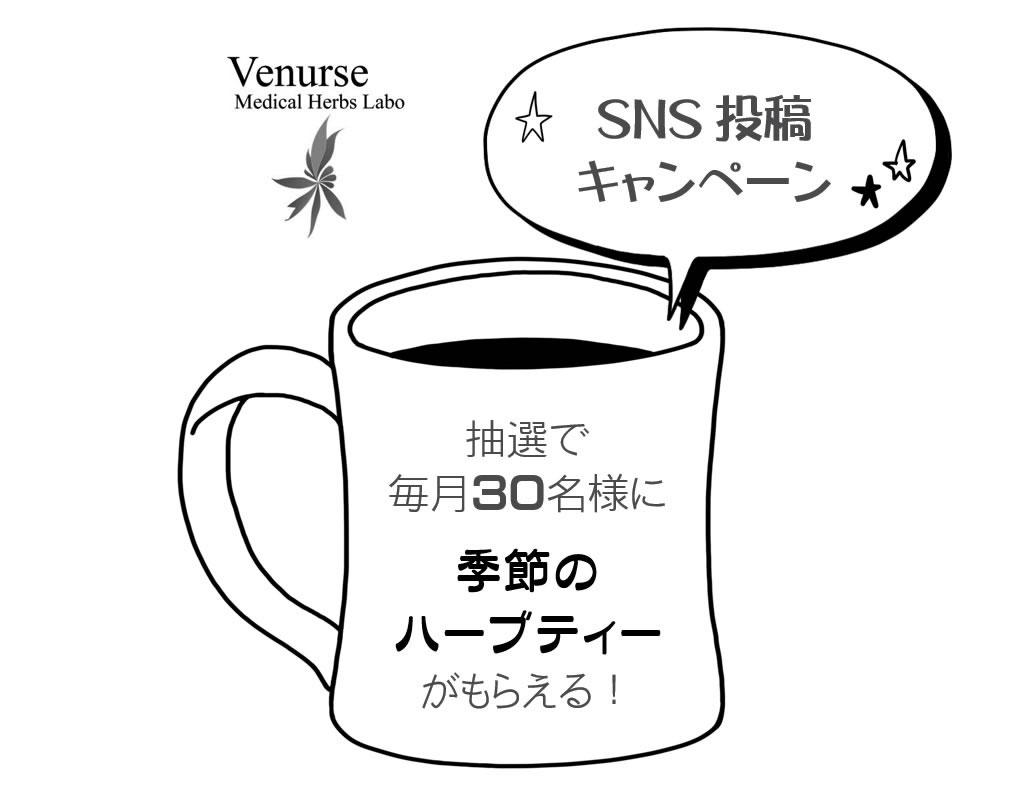 ヴィーナース|SNS投稿キャンペーン(instagram)