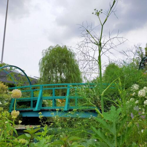池袋の空中庭園 ヴィーナース(venurseherbs)