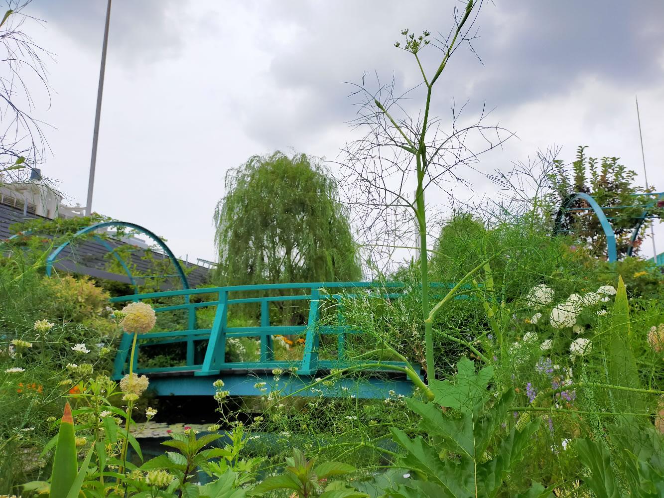 池袋の空中庭園|ヴィーナース(venurseherbs)